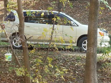 Toyota Ipsum 1999 года в Артеме