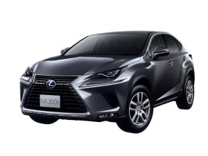 Lexus NX300h version L 2020 г.